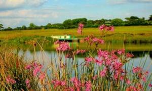 Blagdon Water House Boats, Holsworthy, Devon