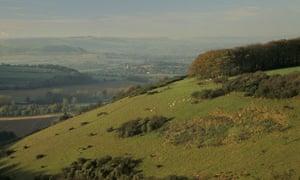 Melbury Downs, Dorset