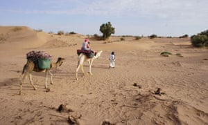 Ride a camel into the Moroccan Sahara