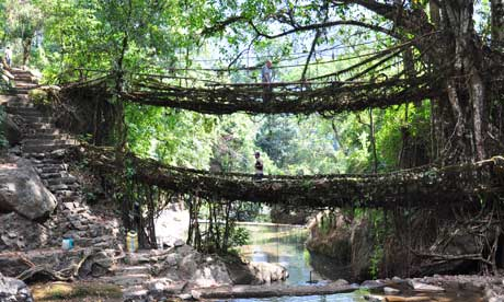 North State Auto >> India's undiscovered gem: the hills of Meghalaya | Travel | The Guardian
