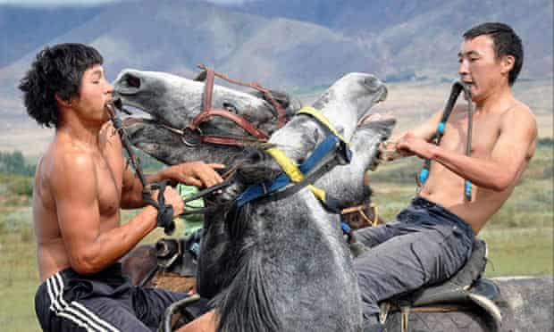 Beeth there: In Kyrgyzstan, two buzkashi players and their horses clash
