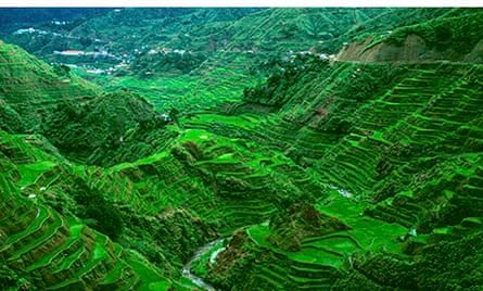 Rice terraces, northern Luzon, Philippines