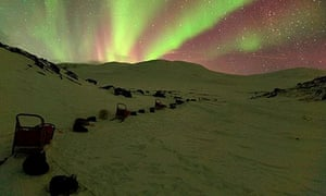 Northern lights and dog sleds in Lapland