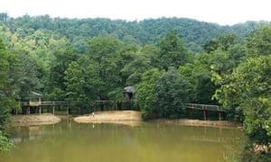 Muba Jungle Camp, India