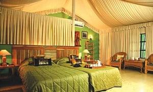 Pench Jungle Camp, India