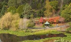 Mount Lofty Botanical Gardens, Adelaide