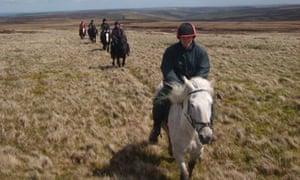 Sinderhope Pony Trekking Centre