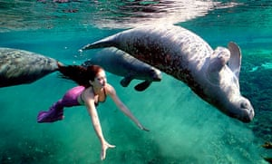 Weeki Wachee Mermaids, Weeki Wachee