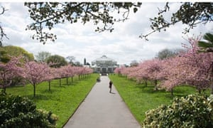 In Bloom The Uks Best Gardens For Spring Flowers Travel The
