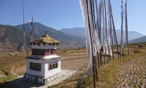 Rice fields and a stupa in Punakha valley, Bhutan