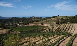 Clos d'Alzeto, Corsica