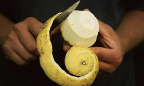 organic lemons in harvest in Sicily