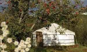 A yurt at Yarde Orchard
