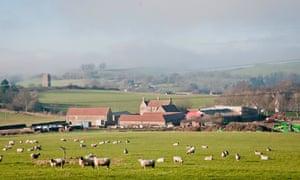 Durslade Farm