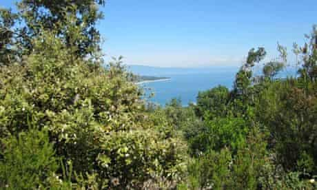 Views of the Aegean from the Aristotle footpath