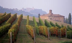 Piedmont wine route: top 10 guide | Travel | The Guardian