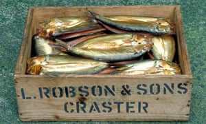 Smoked kippers in a box