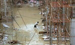 An Indian labourer works in Delhi